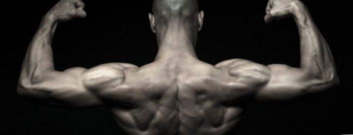 cure steroide sans relance