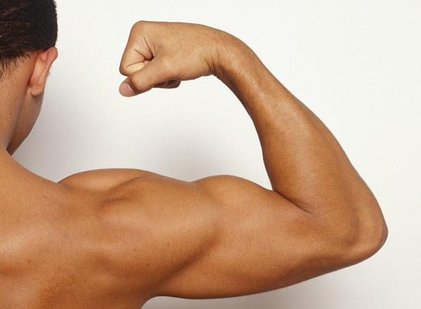 comment-muscler-ses-triceps