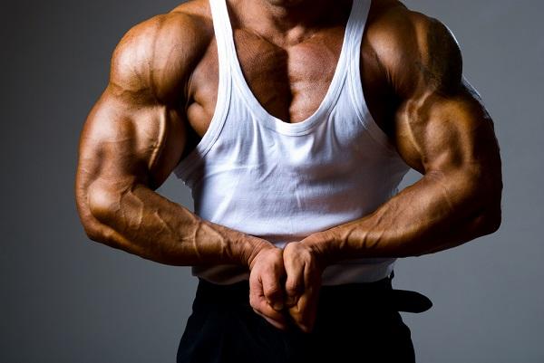 steroides et hormone différences